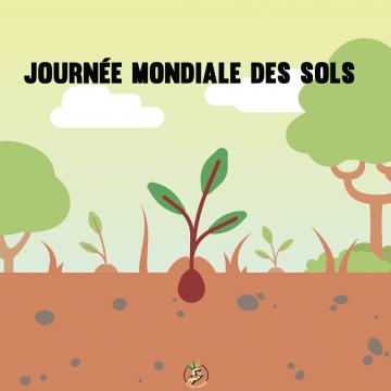 about soil pollution