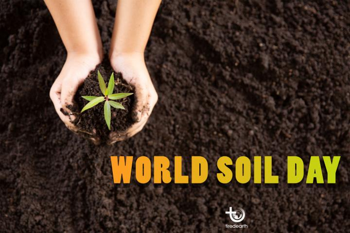 Save Our Food Production by Conserving the Soil